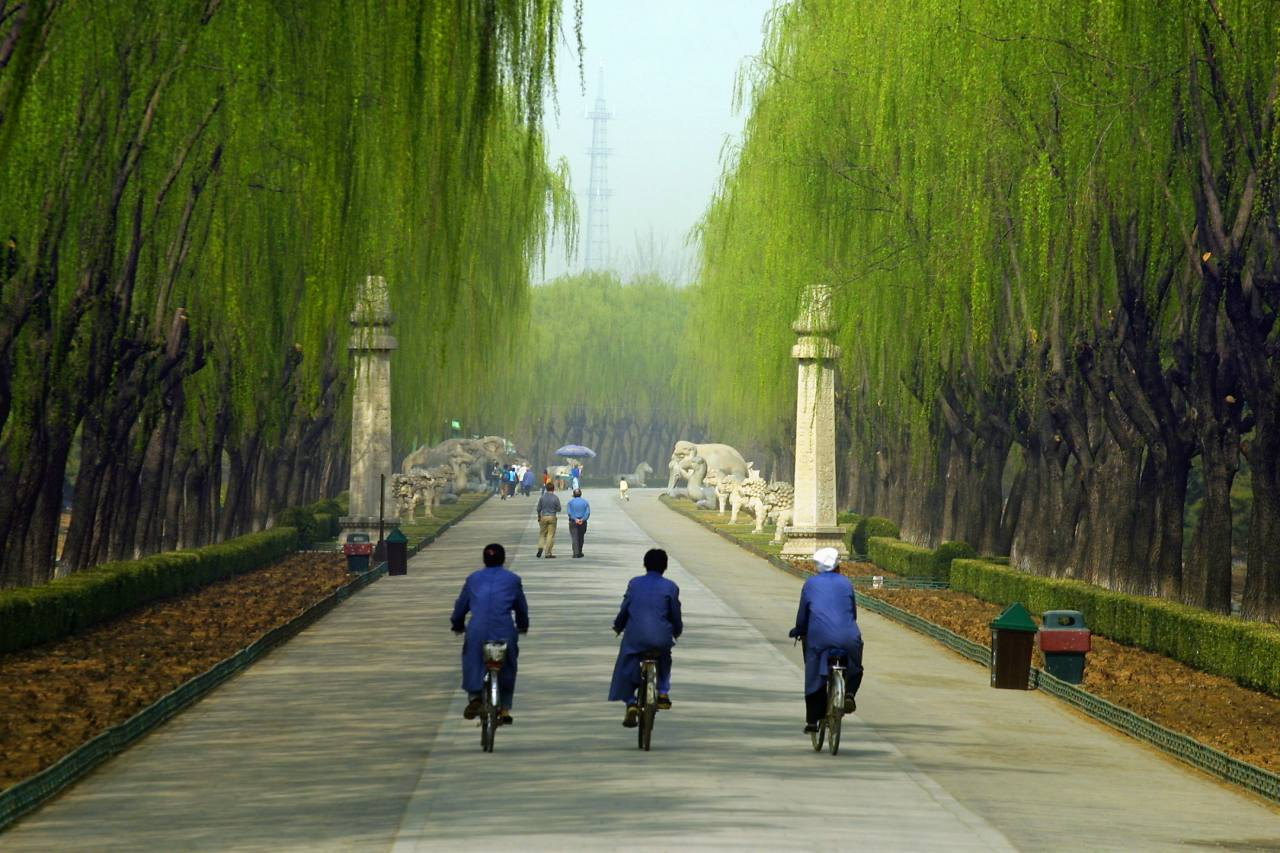 Long Shot Of The Pathway To Tombs As 3 Cyclists Go Down It Brads Photos